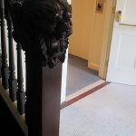 carved lion head on staircase