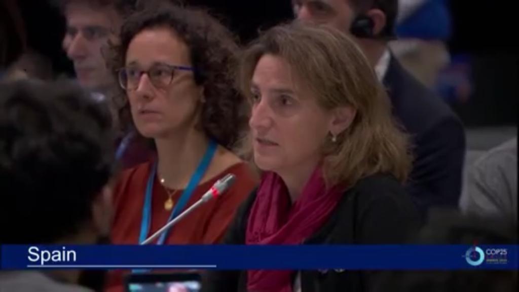 COP25 Madrid 2019 Pleno de cierre.jpeg