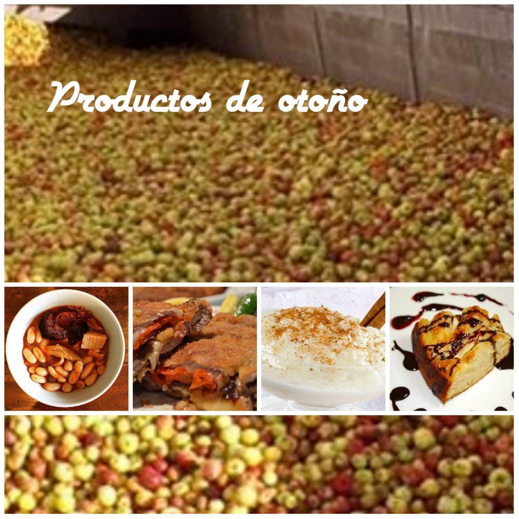 asturias platos tipicos