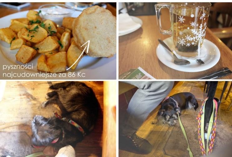 Moje jedzenie, ciepła herbata, bo temperatura nas nie rozpieszczała i mile widziane, grzeczne, takie jak moje :P sucze - Restaurace Plzeňka - Duli.