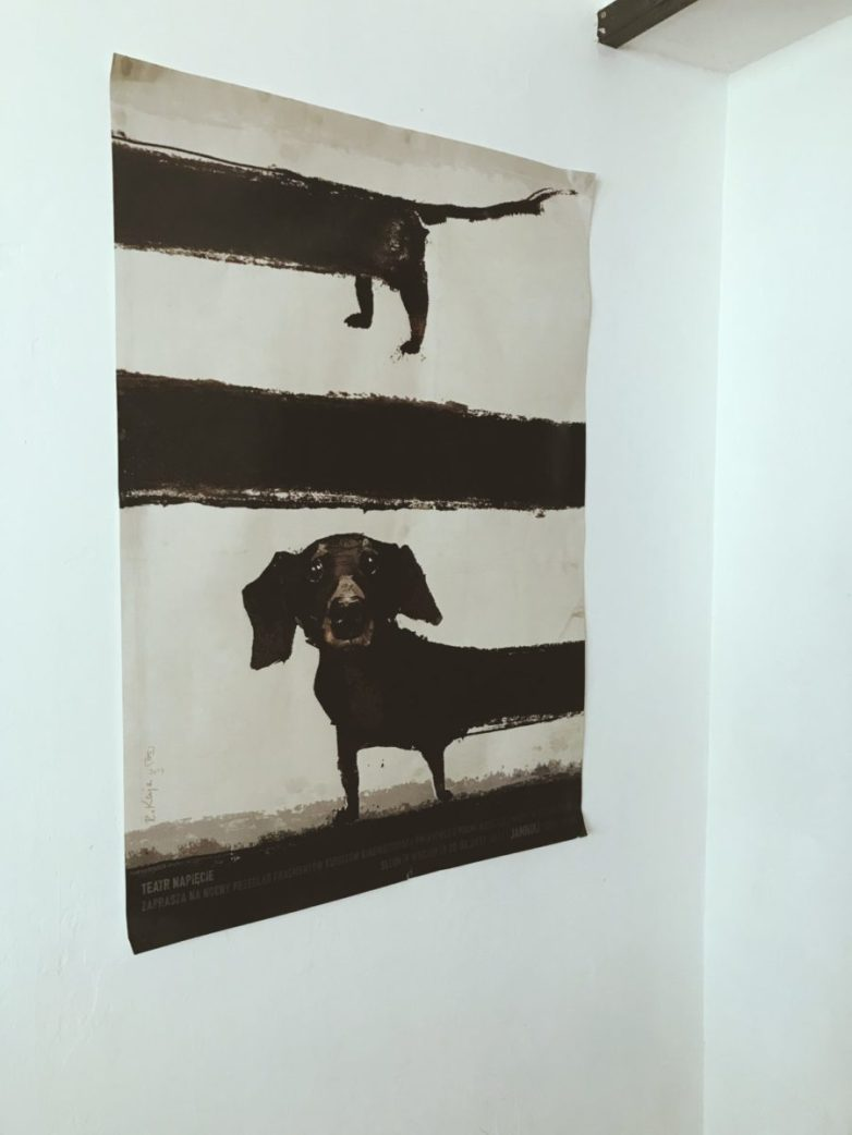 Kiedy na wejściu widzisz plakat z przydługim psem, wiedz, że jest psiolubnie ;)