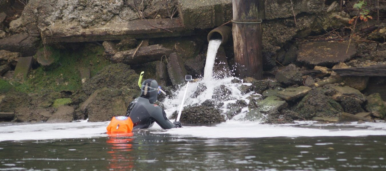 A swimmer stands close under a stormwater outfall in the Duwamish River.