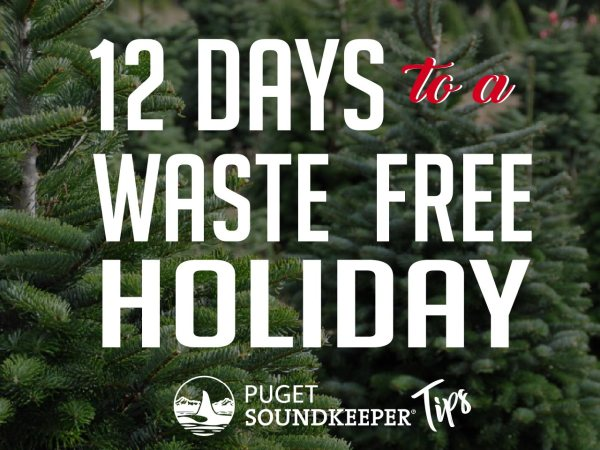 12 Days to a Waste Free Holiday