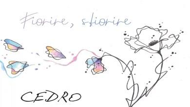 """Photo of Il giovane cantautore brindisino CEDRO pubblica il concept album """"Fiorire, Sfiorire"""""""