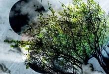 """Photo of FUORI  il primo disco """"Sperimentalist"""" dell'autore foggiano VIC PETRELLA, anticipato dal singolo """"Under The Stars"""""""