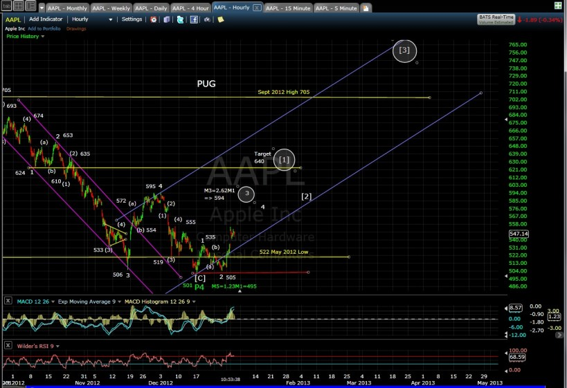 PUG AAPL 60-min mid-day 1-3-13