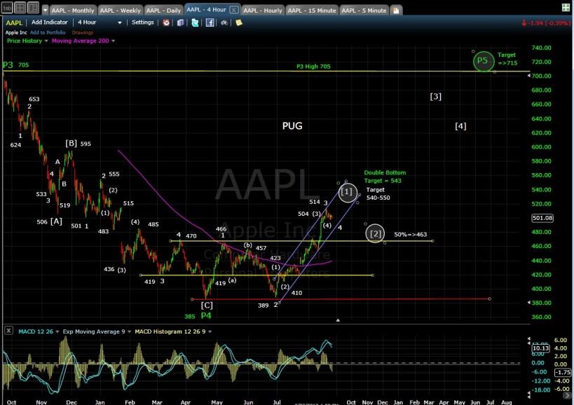 PUG AAPL 4hr chart EOD 8-24-13