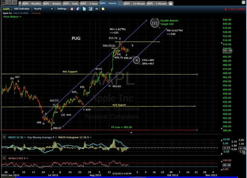 PUG AAPL 60min chart EOD 8-24-13