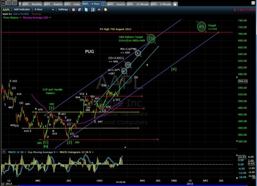 PUG AAPL 4-hr chart EOD 12-6-13