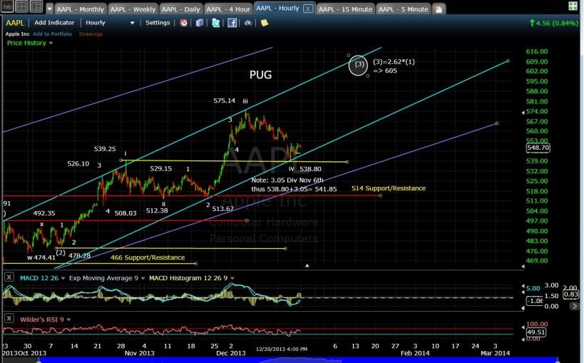 PUG AAPL 60-min chart EOD 12-20-13