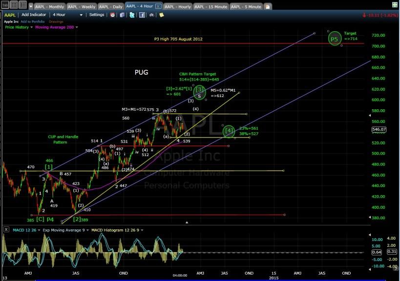 PUG AAPL 4-hr chart EOD 1-24-14