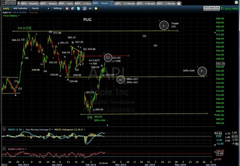 PUG AAPL 60-min chart MD 2-13-14