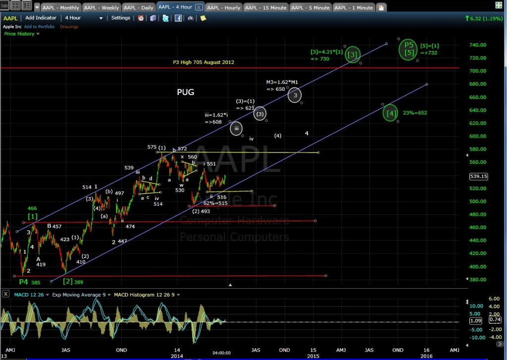 PUG AAPL 4-hr chart EOD 3-24-14
