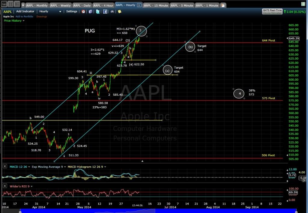 PUG AAPL 60-min chart MD 6-6-14