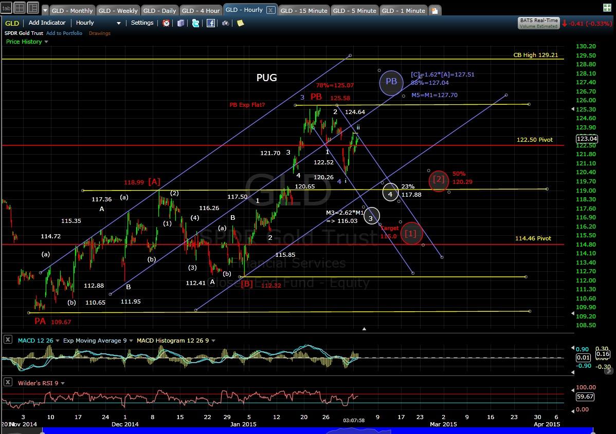 PUG GLD 60-min chart EOD 2-2-15
