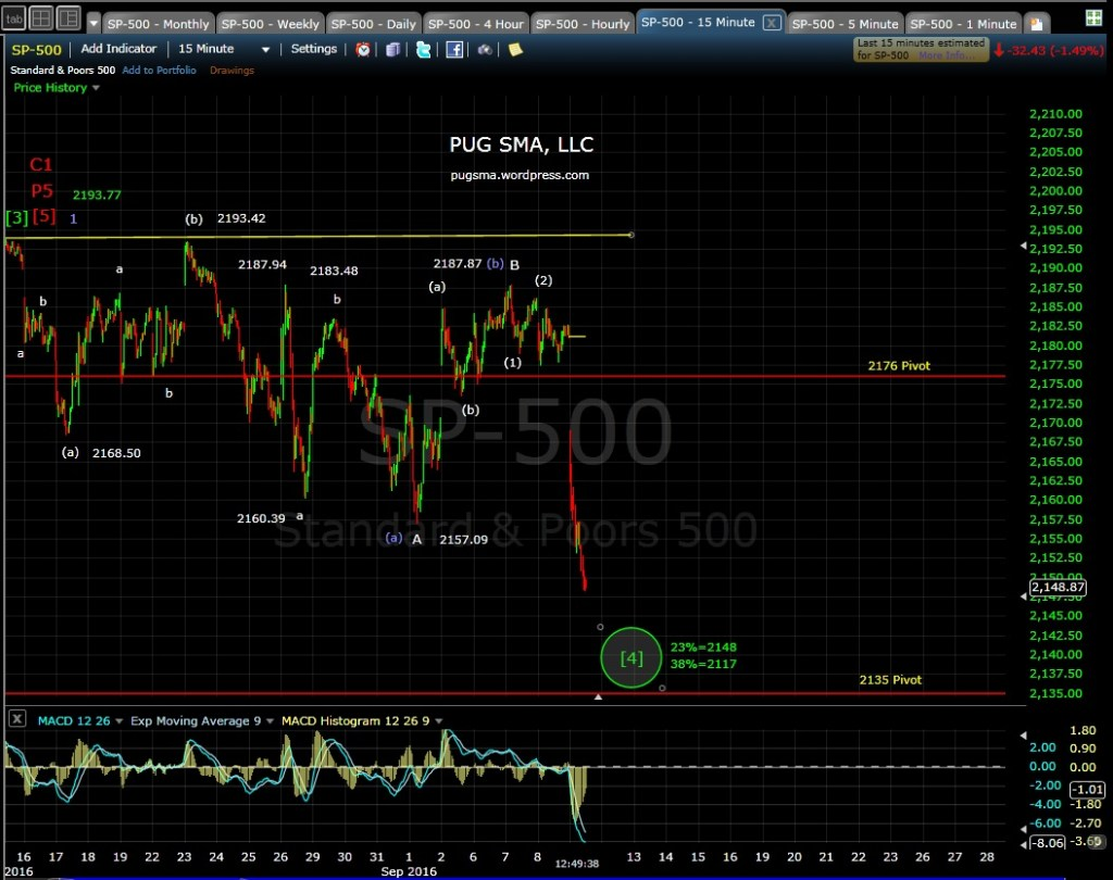 pug-sp-500-15-min-9-9-16