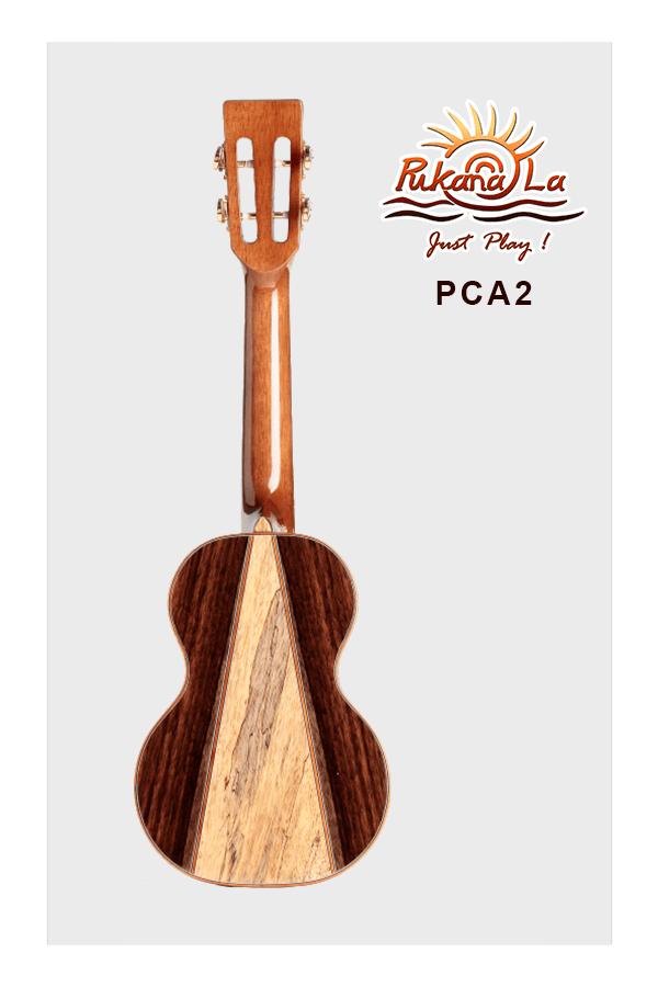 PCA2-02