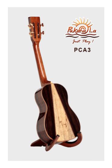 PCA3-04