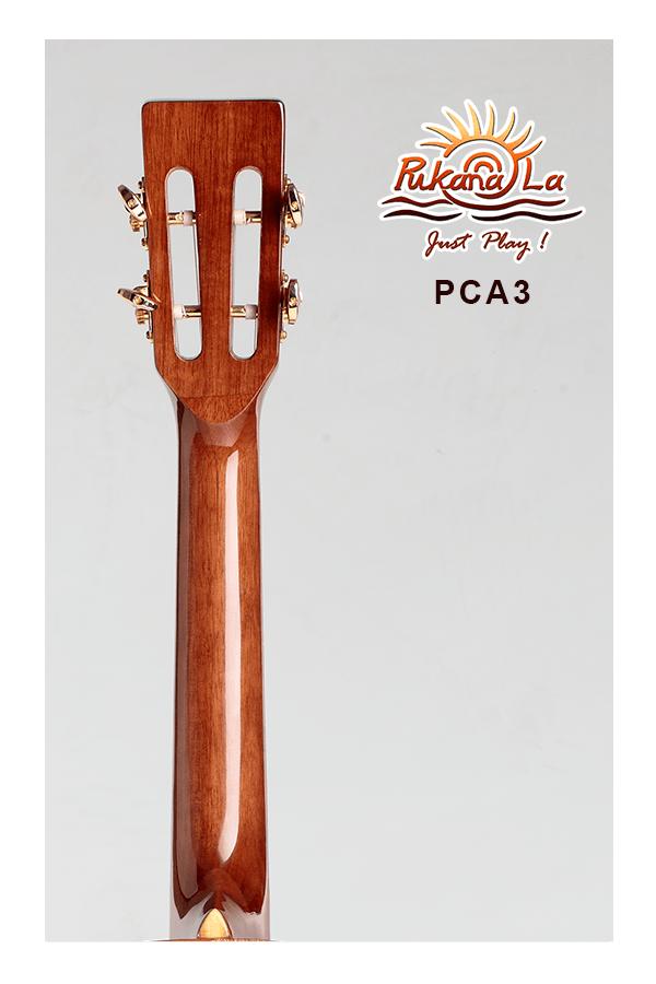 PCA3-06
