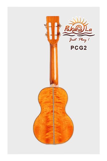 PCG2-02
