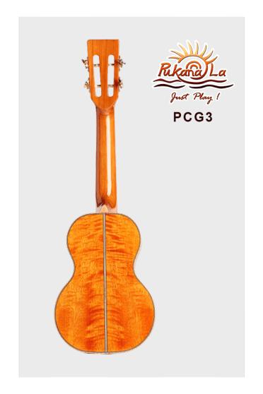 PCG3-02