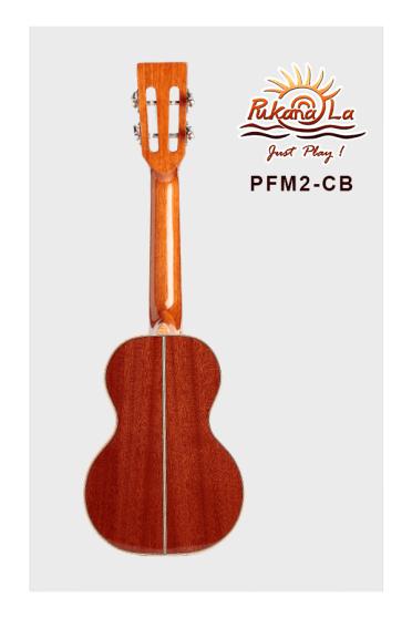 PFM2-CB-02