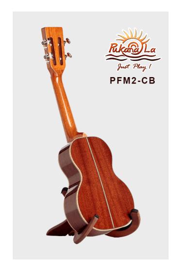 PFM2-CB-04