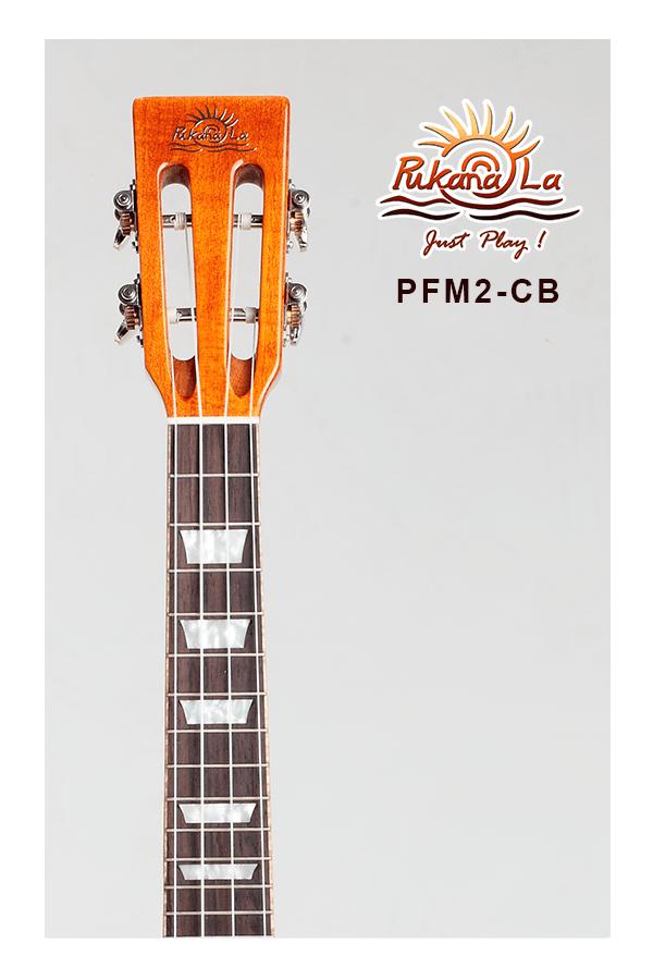PFM2-CB-05