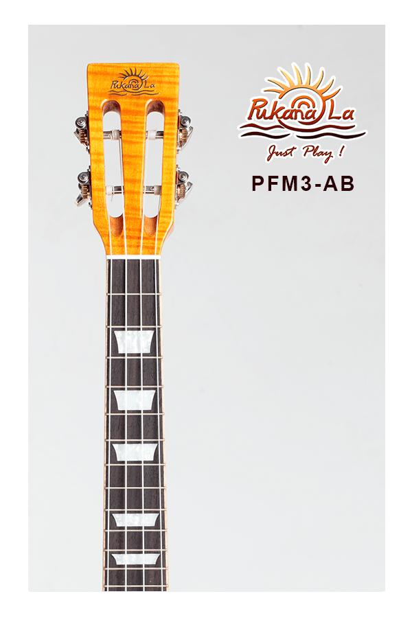 PFM3-AB-05