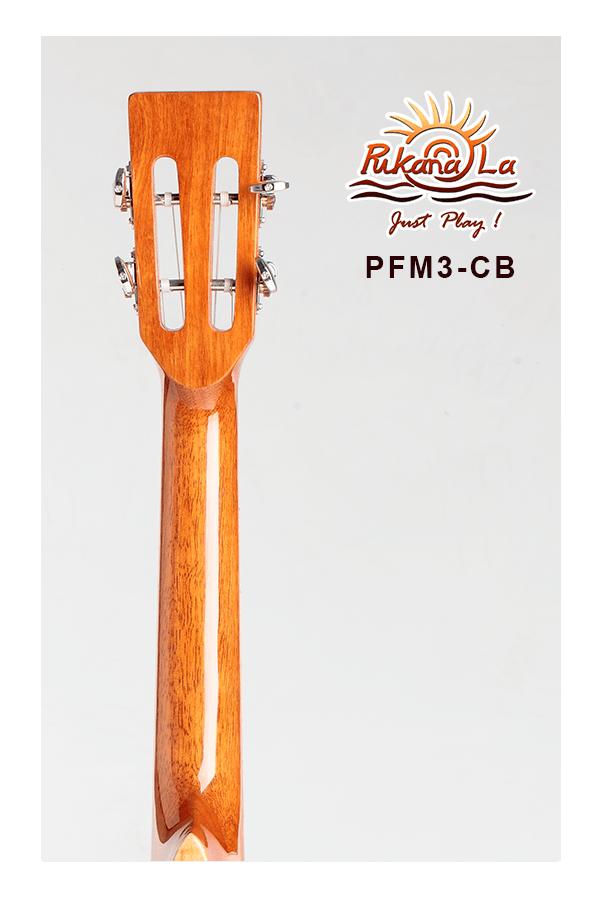 PFM3-CB-06
