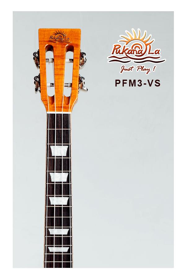 PFM3-VS-05