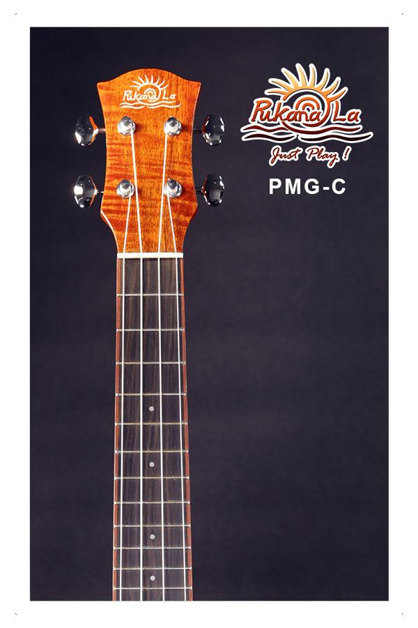 PMG-C-05