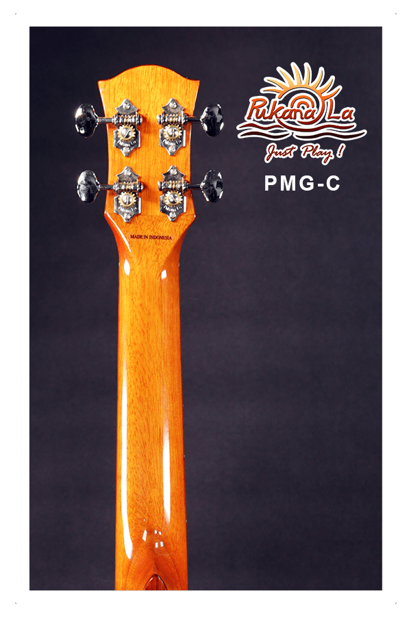 PMG-C-06