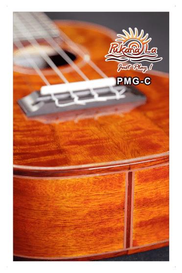 PMG-C-08