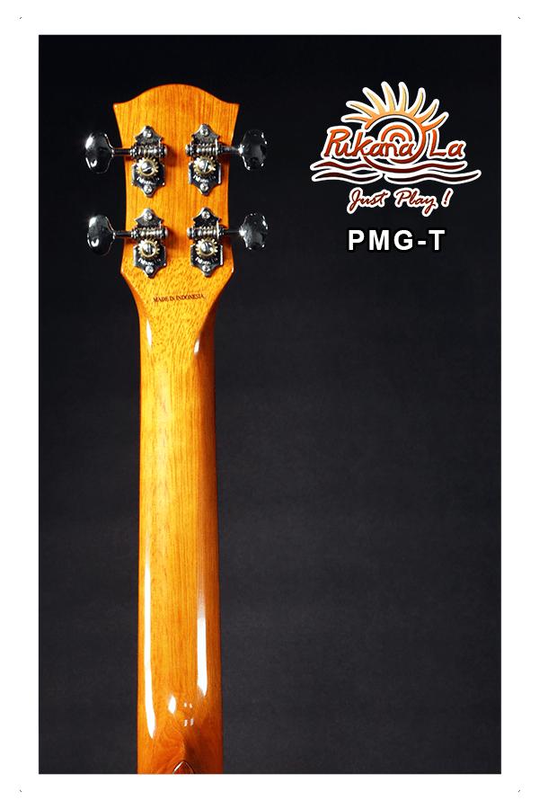 PMG-T-06