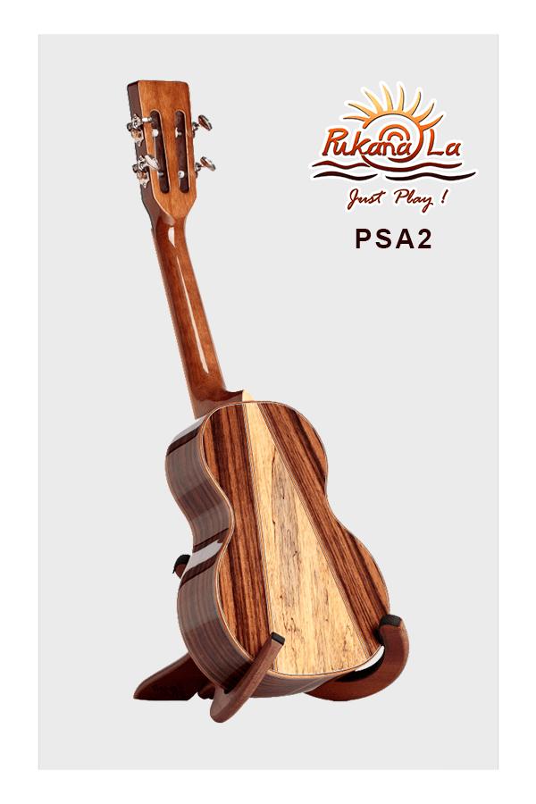 PSA2-04