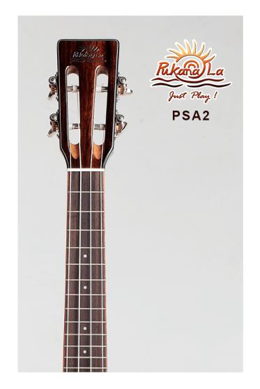 PSA2-05