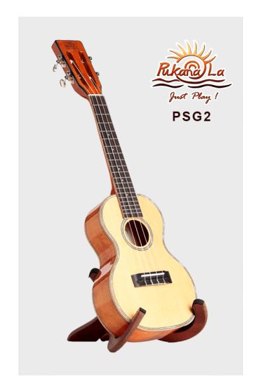 PSG2-03