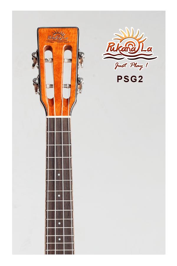 PSG2-05