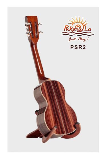 PSR2-04