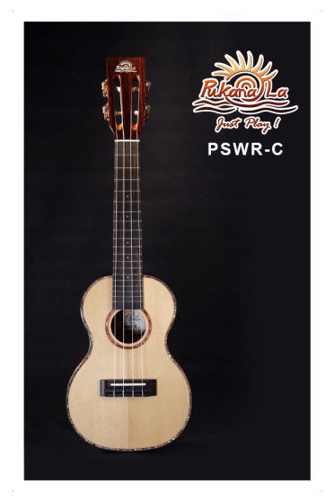 PSWR-C-01