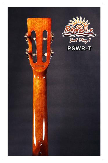 PSWR-T-07