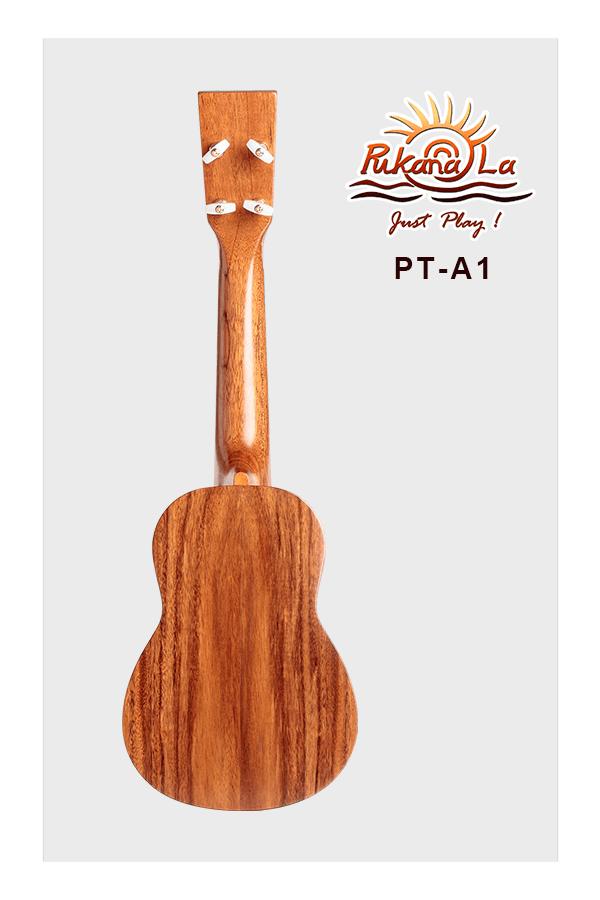 PT-A1-02