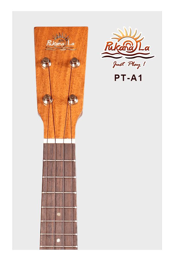 PT-A1-05