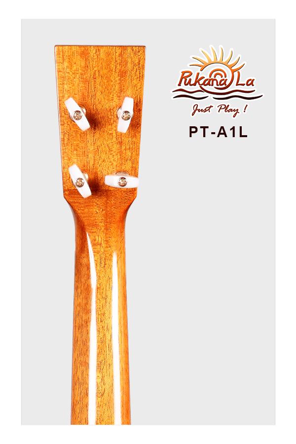 PT-A1L-06