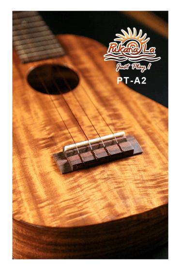 PT-A2-07