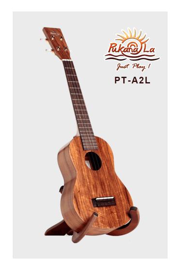 PT-A2L-01