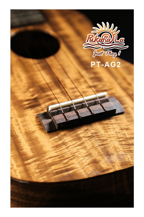 PT-AG2-07