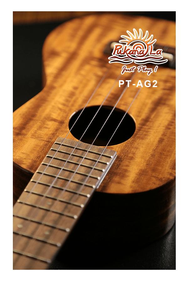 PT-AG2-09