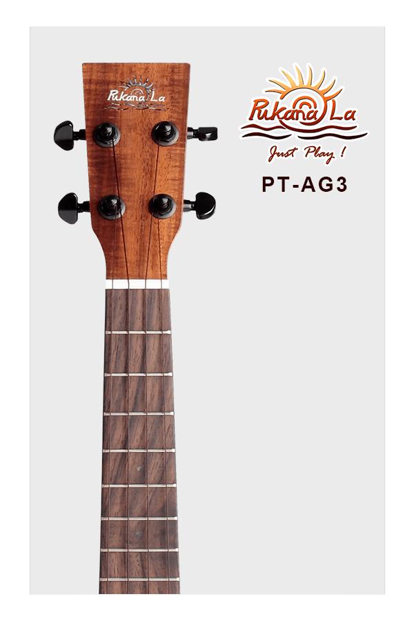 PT-AG3-05